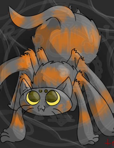 Spider Kitty